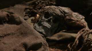 Skrydstruppigen blev fundet i 1935. Hun er begravet med øreringe af guld og et fire meter langt fint forarbejdet stykke fåreuld.