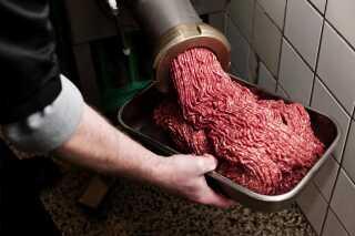 Køer bøvser og prutter methan, som er en meget potent drivhusgas. Derfor hilser klimaforskere ofte alternativer til det røde kød velkomment.
