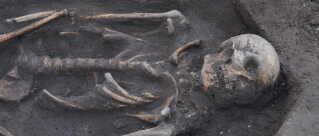 I alt 38 skeletter i fem lag blev fundet i 122 kvadratmeter villahave.