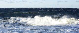 Klimaforandringerne kan allerede måles i Østersøen. Og vores store kendskab til konsekvenserne for det danske farvand kan hjælpe i fremtiden.