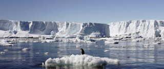 Havisen ved Antarktis har aldrig fyldt mindre.