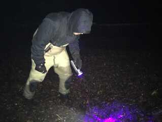 Kenneth Holmqvist leder efter rav på stranden ved Frølunde Fed med en ravlampe.
