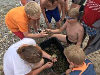 Krabberne, som børnene fanger på lejren, skal på fredag laves til suppe. Det glæder Jonathan Kunstmann sig til.
