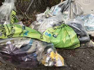 Her er en del af dagens høst fra Børnecentret Æblet. Torsdag står den på sortering af affaldet og en tur på genbrugspladsen. Sidste år blev der indsamlet 173.000 kilo affald og 102.000 dåser i hele landet til Affaldsindsamlingen.