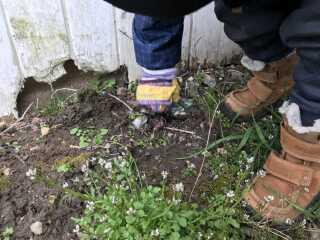 Når børnene fandt ting, der lå lidt nede i jorden, kæmpede de ihærdigt for at få dem fri. Her er det en dåse, som bliver hevet op af jorden.