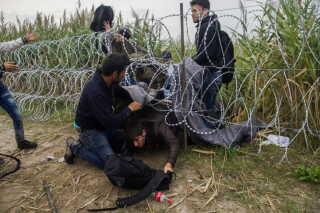 Mange trodser pigtrådshegnet langs grænsen mellem Ungarn og Serbien for at komme ind i EU. EPA/Zoltan Balogh HUNGARY OUT