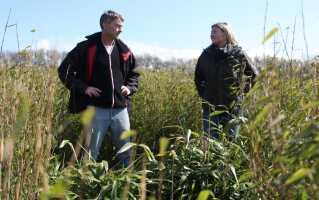 Det danske klima minder meget om det kinesiske, når det gælder temperatur og nedbør, så på den måde er Danmark et perfekt land at dyrke bambus i. Søren Ladefoged og Anita Haupt Holm har da også planer om at høste de lange stængler året rundt.