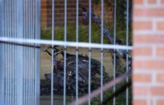 En udbrændt knallert blev efter skyderiet fundet i nær Rosengård i Malmø i går aftes.