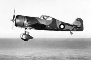 Fokker D 21. Flyet kunne flyve 460 km/t. Det havde to 20 millimeter maskinkanoner, to 8 millimeter maskingeværer og plads til 100 kilo bomber.