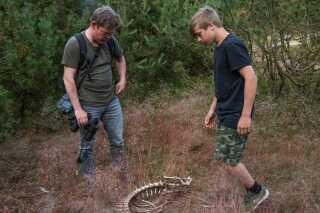 Thomas Boesdal har denne aften sin søn med ud at kigge efter ulvespor