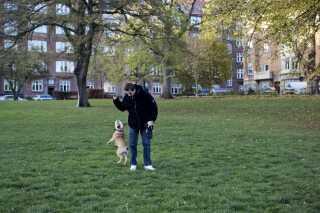 Hele livet har Hugo haft hund. To maltesere og en labrador. Han og Marie besluttede sig hurtigt for også at købe en, og selvom Hugo aldrig havde tænkt, at det skulle være en engelsk bulldog, faldt han hurtigt for den lille hvalp. De døbte den Rolf, som også er Hugos alias. - Jeg kunne ikke ønske mig en sødere hund. Han er totalt sjov. Det var bare sådan ret hurtigt, at Marie og jeg fik en hund, og vi flyttede sammen, men jeg kan jo bare mærke, at det skal være hende. Hvis der ikke er plads til at være lidt skør og gøre sådan nogle ting, hvad er der så plads til?, spørger han.
