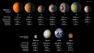 Denne infografik er en illustration af, hvordan de syv planeter omkring Trappist-1 kunne se ud. I illustrationen kan man se og sammenligne planeternes størrelseforhold, kredsløb, afstanden til nærmeste stjerne osv. i sammenligning med planeter fra vores solsystem.