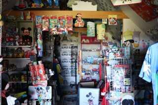 Samlingen på Bornholm tæller næsten 20.000 forskellige ting fra Walt Disneys tegneserieunivers. Anders And-tingene alene udgør over 3.000 forskellige objekter.