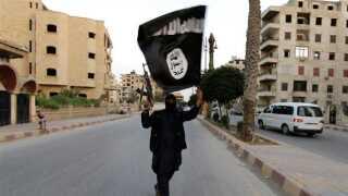 Islamisk Stat har udnyttet, at både det irakiske og syriske statsapparat til dels er brudt sammen.