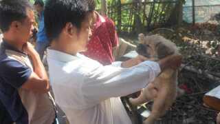 Aktivisten Du Yuefeng på plads i Yulin.