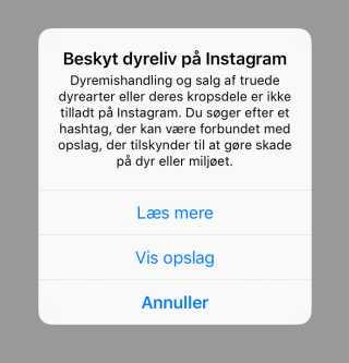 På Instagram kommer der nu en advarsel op, hvis du søger på bestemte hashtags eller forsøger at lægge bestemte billeder op med vilde dyr. (Foto: Troels Karlskov, DR Nyheder)