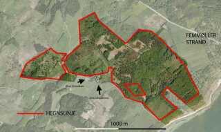 De første planlagte 120 hektar i det naturrige område ved Mols Bjerge hvor en flok vildheste allerede til efteråret skal pleje naturen.