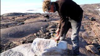Daniel Skov har sin egen mission, men har også brug for stenprøver.
