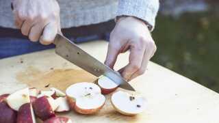 Æblers fiberstoffer (pektin især) medvirker til at beskytte mod hjerte-karsygdomme og forhøjet kolesterol, både ved at binde fedt i tarmen og ved at stabilisere blodsukkeret.