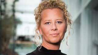 Sandy French, Indholdschef på DR Nyheder