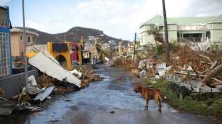 I september 2017 blev Caribien ramt af to kategori 5-orkaner: Irma og Maria.