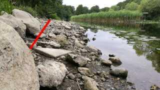 Den røde streg viser, hvor vandstanden normalt flyder ved Susåen på Sjælland.