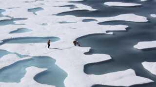 Den arktiske is smelter hurtigere end nogensinde før.