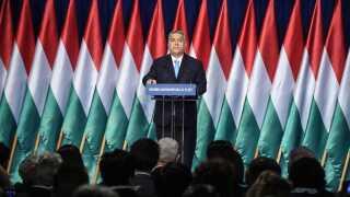 Viktor Orbán har stået i spidsen for Fidesz siden midten af 1990'erne.