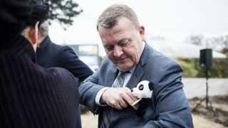 Lars Løkke Rasmussen (V) var i 2017 med til at tage de første spadestik til det nye pandaanlæg i Københavns zoologiske have.
