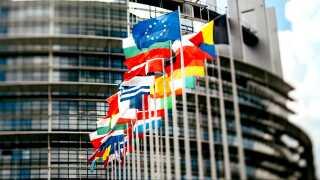 EU's 28 lande står de næste dage for et af de største valg i verden.