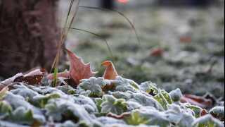 Frosten har allerede gjort sit indtog de fleste steder.