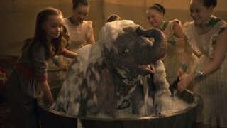 - Disney er i fuld gang med at puste sig op og pudse deres brand af, inden streamingtjenesten Disney+ skal tage kampen op med Netflix, skriver Per Juul Carlsen, der mener, at 'Dumbo' er skabt af økonomiske årsager.