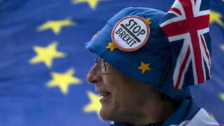 En dame har lavet en sjov hat, der skal fremme budskabet om at stoppe brexit.