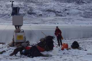 Dorthe Petersen fra ASIAQ ved en målestation i Tasersiaq i Sydvestgrønland - sammen med en polarræv.