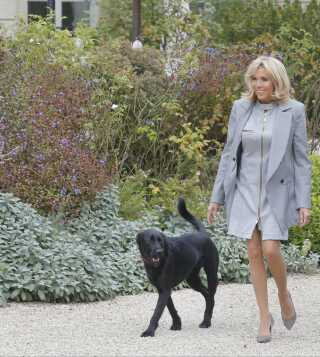 Brigitte Macron og hunden Nemo tog sig i går således ud ved Élyséepalæet i Paris.