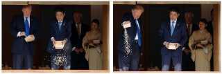 Billedet her fra Trumps besøg i Tokyo i november viser, hvordan både Japans premierminister Shinzo Abe og USA's præsident, Donald Trump, fodrer fisk ved at bruge en hel bøtte med foder.
