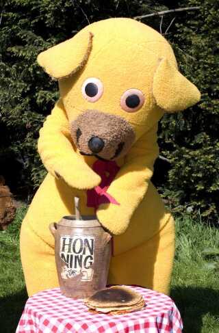 Bamse selv er mere til honning end Bamsebitter.