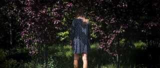 Hovedpersonen i ungdomsromanen 'Wiki over Miss Elises elendige liv' er en 17-årig pige, som kæmper med angst.