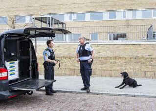 Den ny 16-årige pige blev anholdt i januar 2016 i Kundby på Sjælland.