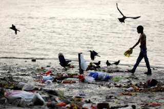 Den indiske flod Ganges er så forurenet, at den udgør en stor sundhedsrisiko for både de mennesker, der er afhændige af den for drikkevand, og den omkringliggende natur.