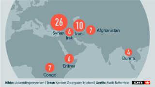 Her er de lande, som flest kommuner ønsker, at deres flygtninge skal komme fra