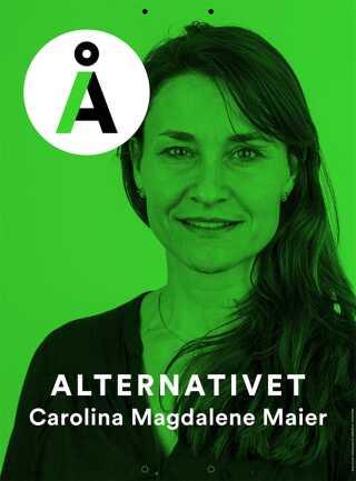 BILLEDER Hvem er Alternativet udover Uffe Elbæk? | Valg2015 | DR