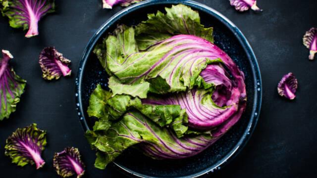 salat i skål