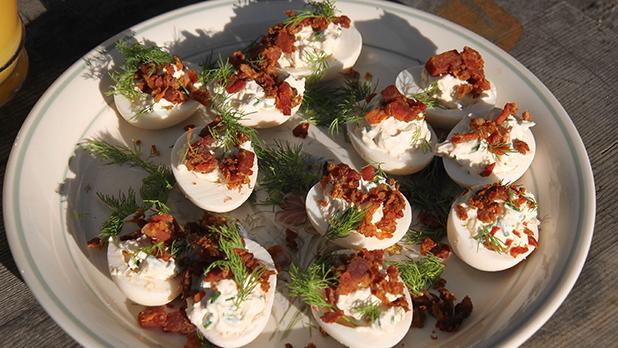Billede viser en tallerken med syltede æg med sennep og peberrod, pyntet med dild.