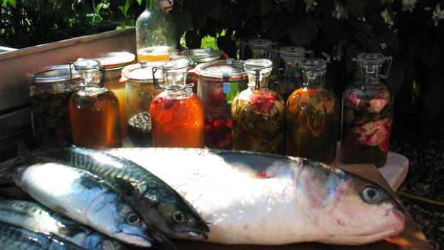 fisk og syltede sager i glas