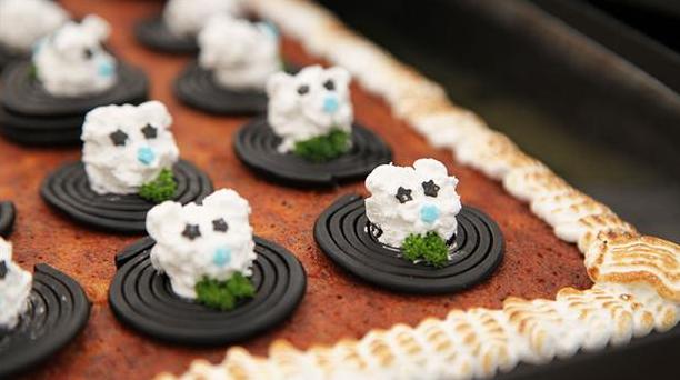Skøn kage til børn med lakrids- og marengsbamser