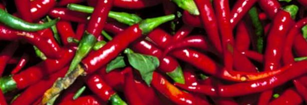 Billede af chutney af chili og peberfrugt