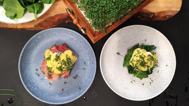 Eggs Benedict og Eggs Florentine