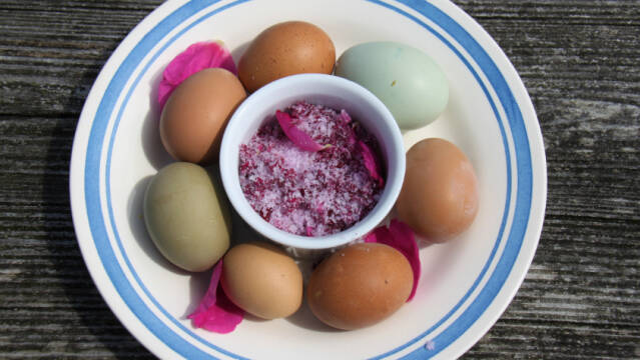 Takkerlen med hele æg og lyserødt salt i midten