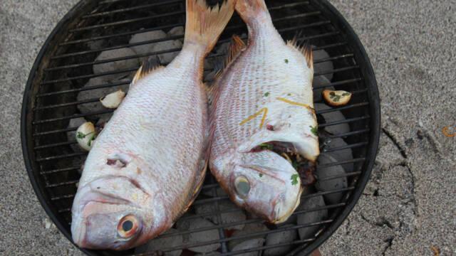 To store fisk på sort grill